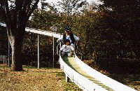 Large slide photograph