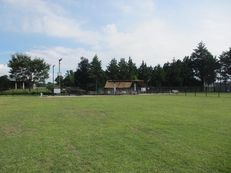 アンデルセン 公園 ドッグラン