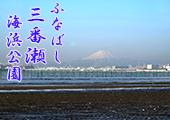 Funabashi Sanbanze Kaihin Koen (Seaside Park)